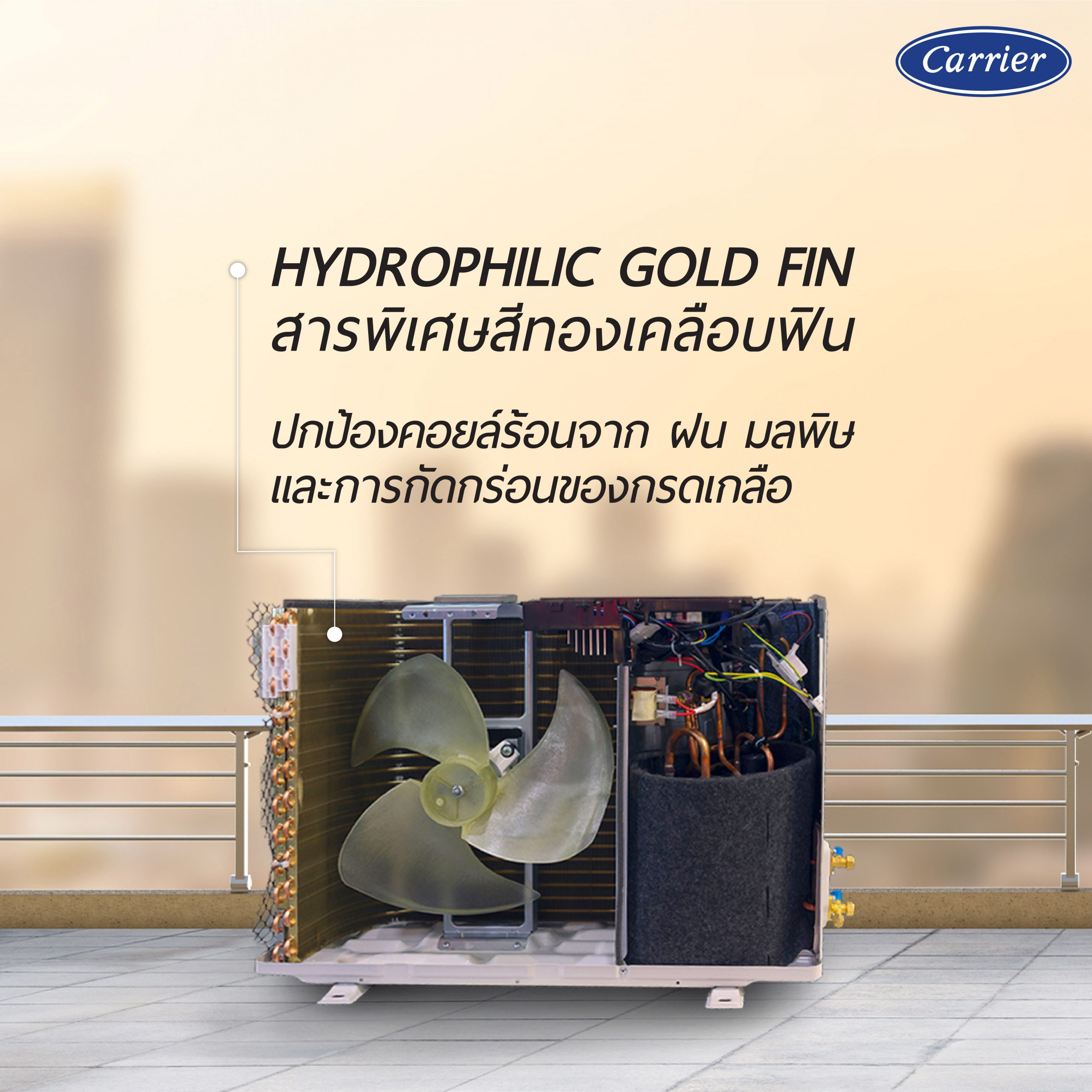 feature gold fin 2